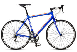 Schwinn Fastback2 road bike