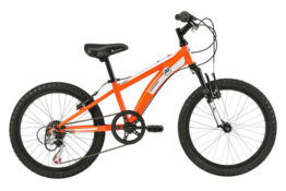 cobra 20 youth mountain bike